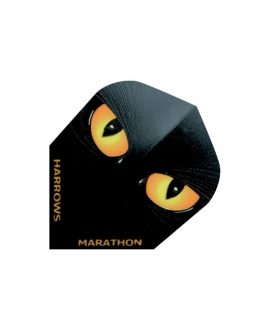 Aleta Harrows darts Marathon 1556